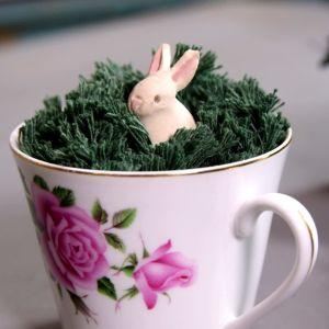 Kahvikuppi missä on lankaruohoa ja mini kani