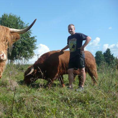 Marko Honkaniemi ja kaksi ylämaankarjan lehmää.
