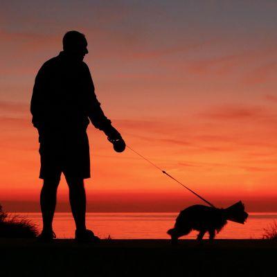 Kuvituskuva, mies ja koira auringonlaskussa.