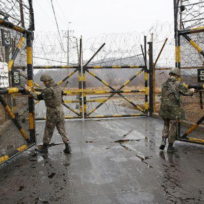 Eteläkorealaisia sotilaita koreoiden välisellä raja-alueella Cheorwonissa.