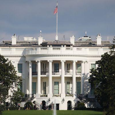 Washingtonissa juhlitaan Bidenin voittoa