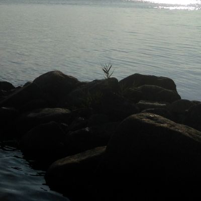 Strand vid havet