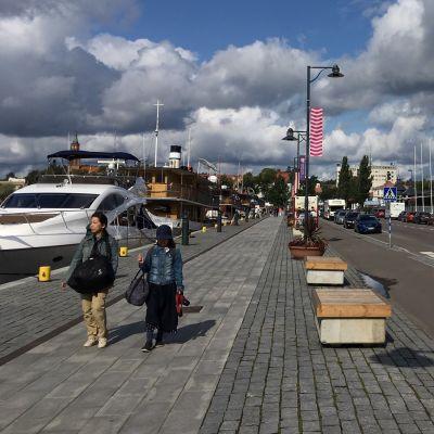 Luontoelokuvafestivaalien kyltti ja Savonlinnan satamaa.