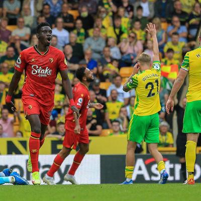 Norwich viftar för offside mot Watford.