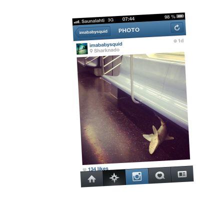 Skärmdump från Instagram
