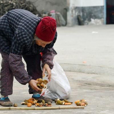 Kylänraitilla kuivatetaan appelsiininkuoria, joita käytetään teen tapaan kuumaan veteen liotettuna.