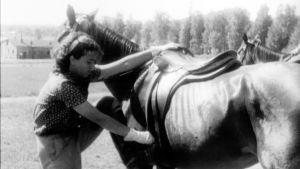 Hevonen ja ratsastajatyttö.