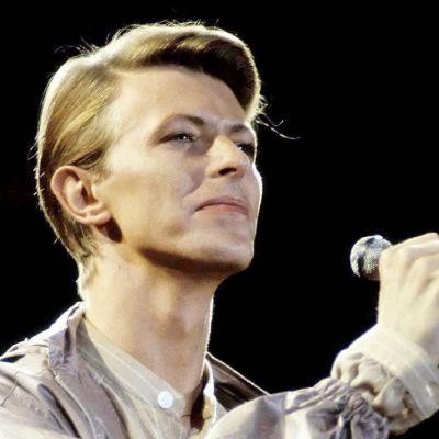 David Bowie esiintymässä Hampurissa vuonna 1976.