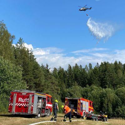 Metsää paloi Liedon Ilmaristen Palovuoren alueella