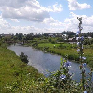 Vy över flod med bro och gröna ängar.