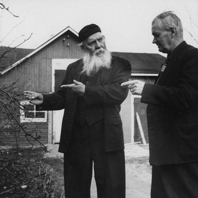 Kirjailija Frans Eemil Sillanpää kotitalonsa pihalla (1950-luku).