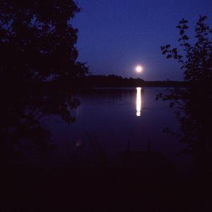 Natt i månsken.