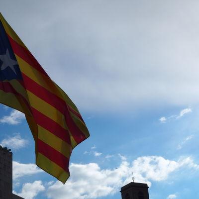 Varianten av Senyeran, den katalanska flaggan, som har en vit stjärna mot ett blå trekant kallas Estelada blava. Den används av de som stöder självständighet.