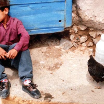 Iranilainen poika istuu maassa oven edessä, vieressään vesikanisterit ja kana.
