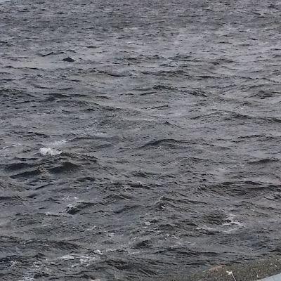 meri aallot harmaus itsemurha harmaa masennus