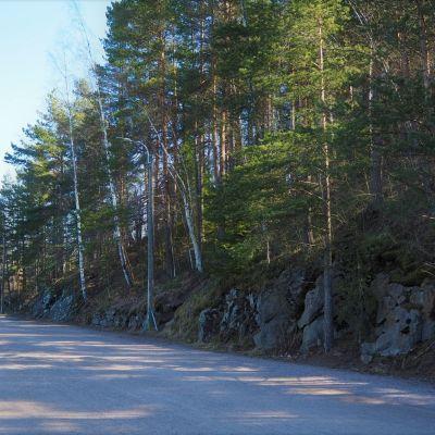 Satamanraitti kohdasta, josta kuntportaat lähtisivät nousemaan. Vielä mäessä on vain puita.