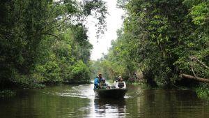 Perhe veneretkellä sademetsässä.