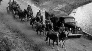 Åtta hästar drar en kanonvagn.