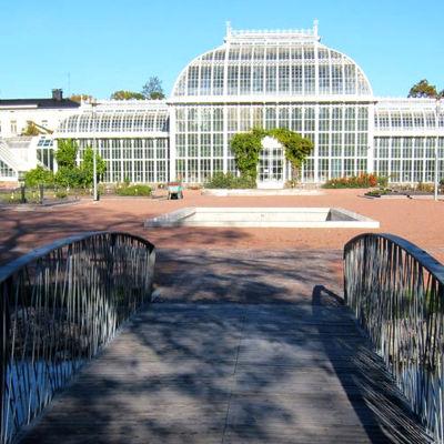 Ett växthus i Kajsaniemi botaniska trädgård.