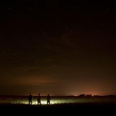 Stjärnhimlen en mörk natt