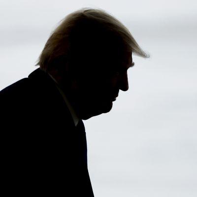 Donald Trumpin siluetti.