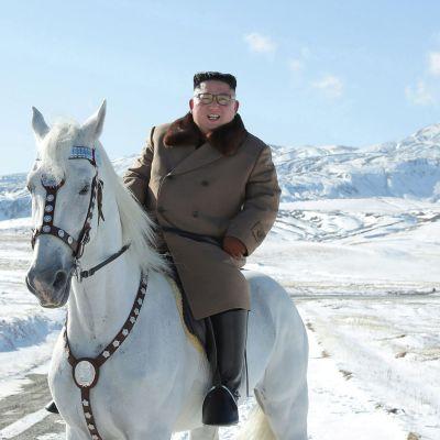 Kim Jong-Un ratsastaa valkoisella hevosella. Taustallalumiset vuoret.