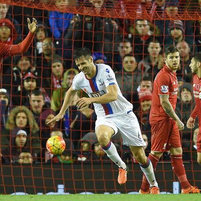 Scott Dann firar sitt mål mot Liverpool.