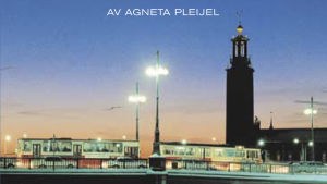En del av pärmen till Agneta Pleijels roman En vinter i Stockholm.