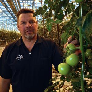 Börje Ivars i sitt växthus