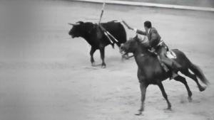 Härkätaistelua Espanjassa 1969. Matadori ratsastaa ja ärsyttää härän suunniltaan.