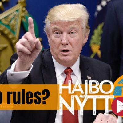 Hajbo Nytt om Donald Trump