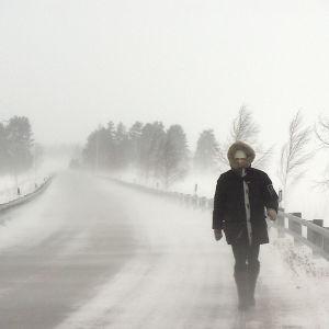 Mies kulkee talvisessa myrskysäässä Pielisellä.