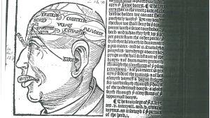 Keskiaikainen piirustus kuvaa, missä osissa aivoja eri henkiset toiminnat tapahtuvat.