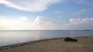 Lågt havsvattenstånd