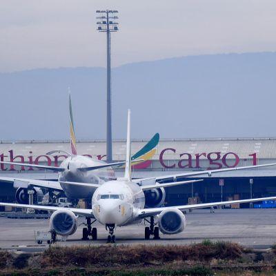 Ethiopian Airlinesin koneita Bolen lentoasemalla Addis Abebassa huhtikuussa 2019.
