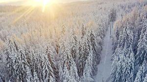 Snö i Norra Karelen