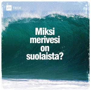 Kuvituskuva: Meren aalto.