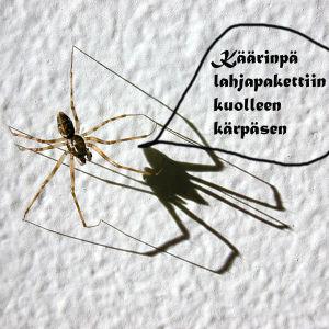 Hämähäkki, puhekupla