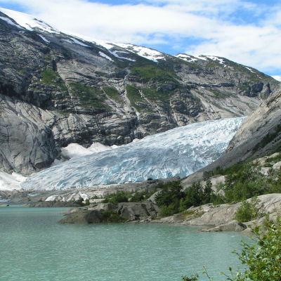 Glaciären Nigardsbreeni västra Norge.