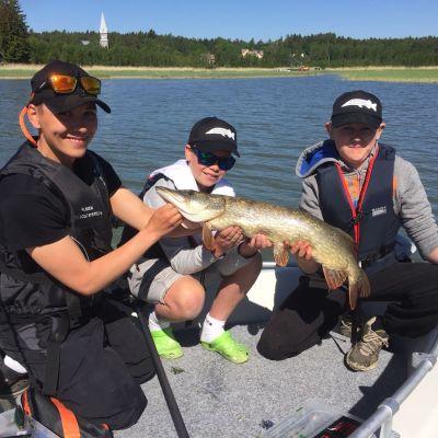 Jonas Karlsson, Sune Bernstedt och Sebastian Westerback visar upp en stor gädda
