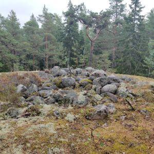Runda stenar i en hög på en bergsklippa i skogen, tallar växer intill högen.