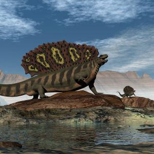 Konstnärens föreställning av en edaphosaurus från perm-perioden.
