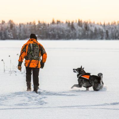 En man och en jakthund i orange kläder går i snön och följer ett djurspår.
