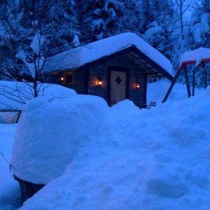 Vintern 2010