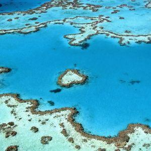 Koillis-Australiassa sijaitseva Iso valliriutta.
