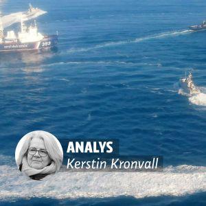 Kerstin Kronvalls analysstämpel på bild av ukrainska fartyg i ryska territorialvatten.