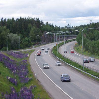 Bilar på en landsväg