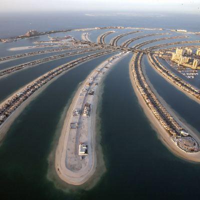 """Dubain keinotekoisia """"palmusaaria"""" varten mereen on upotettu miljoonia tonneja hiekkaa."""