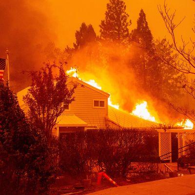 Maastopalo riehui Paradisessa, Kaliforniassa 8. marraskuuta.