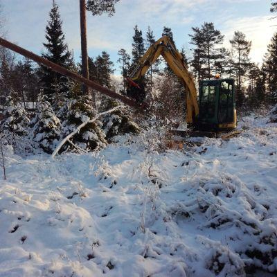 Efterröjningsarbete på Åland efter stormen Aapeli.